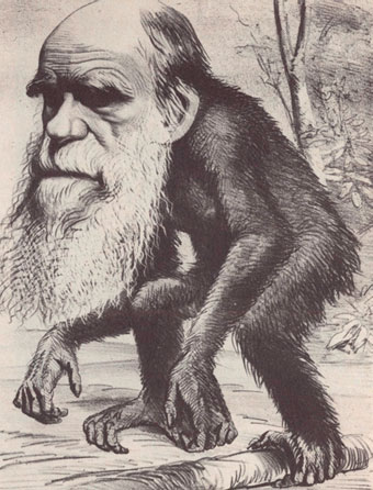 Satirical cartoon depicting Darwin as an ape in reference to his theory that humans and modern apes shared a common ancestor.