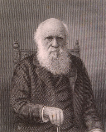 Engraving of Charles Darwin based on a photograph by Elliott & Fry (c 1880) (University of Bristol Library, Special Collections).