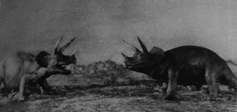 Stills from the 1925 version of The Lost World as featured in the Illustrated London News (Bristol Libraries).