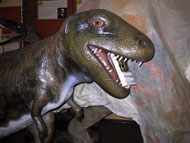 T-Rex gets stuck into The Lost World at the Dinosaur Museum, Dorchester.