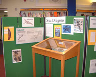 Dinosaur display in a South Gloucestershire library.